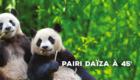 pairi_daiza